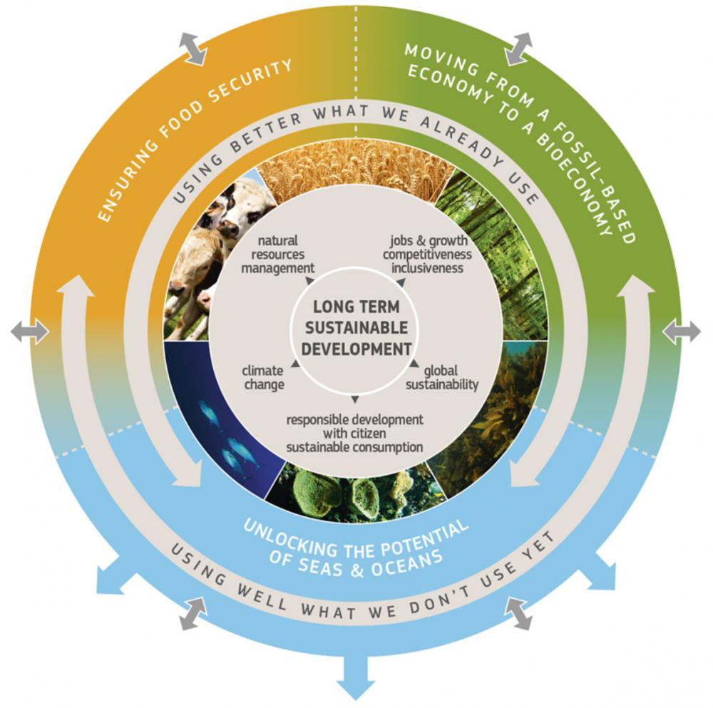 Die Bioökonomiestrategie der EU. Quelle: Europäische Kommission