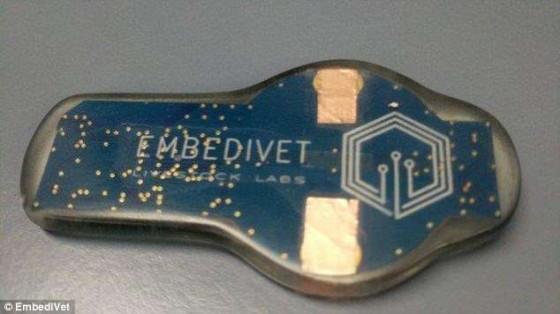 Der von Tim Cannon entwickelte Sensor EmbediVet.