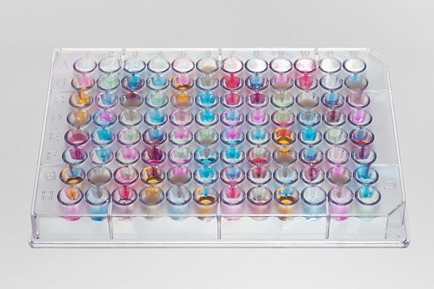 ELISA-Geruchsprofil eines Lebensmittels. Die Farben stellen unterschiedliche Geruchsmoleküle dar, die Stärke der Farbe korreliert mit der Menge des Geruchsstoffes.