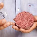 Mark Post präsentiert den ersten Burger aus der Zellkultur.