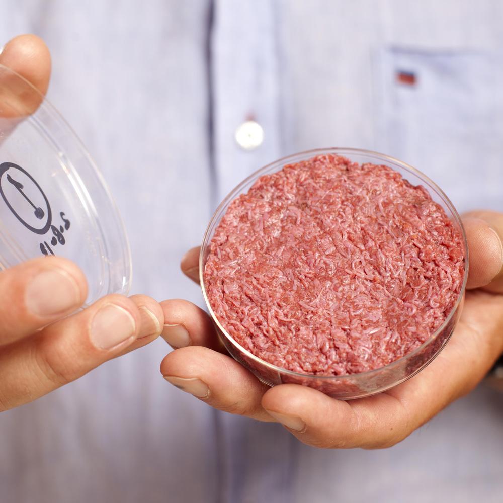 fleisch aus zellkulturen