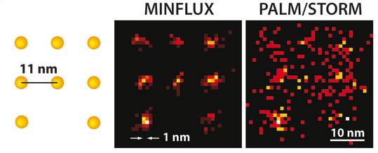 Das MINFLUX-Mikroskop kann erstmals wenige Nanometer voneinander entfernte Moleküle optisch unterscheiden (links). Der Vorgänger PALM/STORM zeigt dagegen nur diffuse Punkte. Quelle/Rechte: MPI f. biophysikalische Chemie/ K. Gwosch