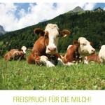 """Titelbild der Kurzpublikation """"Freispruch für die Milch!"""" des Kompetenzzentrums für Ernährung in Freising."""