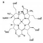 Co-Faktor F430 ist an der Methansynthese im Pansen beteiligt.