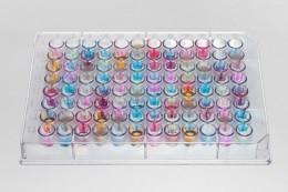 Geruchsprofil eines Lebensmittels. Die Farben stellen unterschiedliche Geruchsmoleküle dar, die Stärke der Farbe korreliert mit der Menge des Geruchsstoffes.