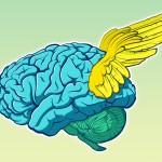 Geflügeltes Gehirn